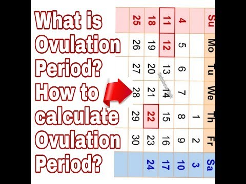 how-to-calculate-ovulation-period-and-get-fast-pregnancy-tips-in-tamil-/#rainbowtalk