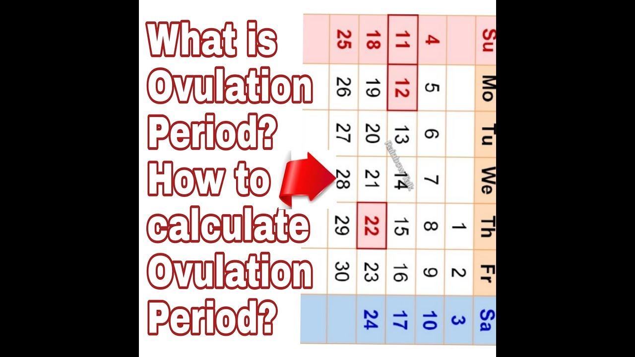 When did i get pregnant calculator