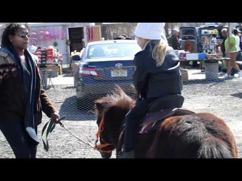 Pony ride, Englishtown Flea Market