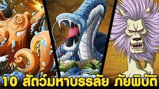 วันพีช-10สัตว์ร้ายมหาบรรลัย-ภัยพิบัติ-komna-channel