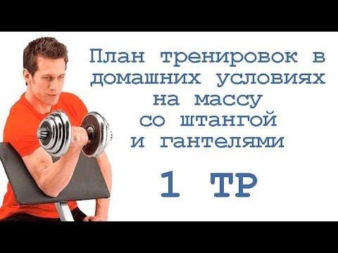 Тренировка со штангой в домашних условиях комплекс упражнений