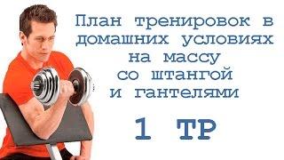 План тренировок в домашних условиях на массу со штангой и гантелями (1 тр)