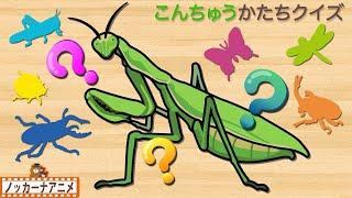 こんちゅう かたちクイズやってみよう!知育【赤ちゃん・子供向けアニメ】Insects shape quiz for kids