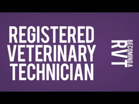 How to Become a Registered Veterinary Technician RVT