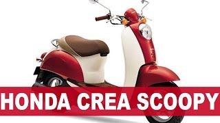 HONDA CREA SCOOPY обзор