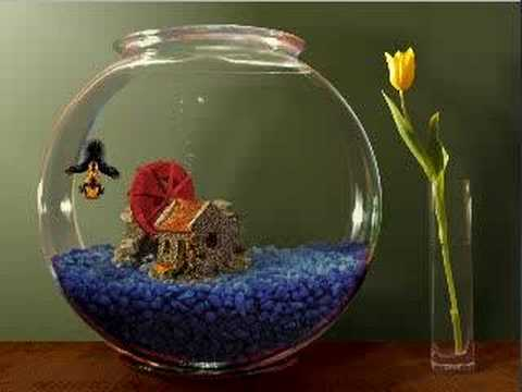 Goldfish aquarium demo fishbowl with toy youtube for How to make a fish bowl