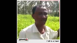"""مزارعو """"وادي رمان"""" في الدريهمي ينعشون الحياة في جنبات الوادي بعد أن أقحله الحوثيون"""