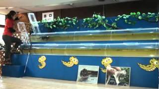 水中レース!果てして勝利はどちらの手に?? http://tabiiki.net.
