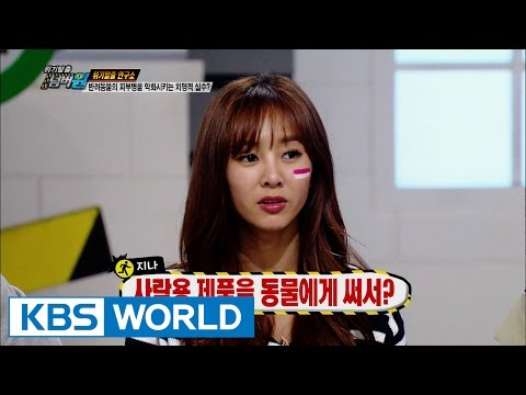 Safety First | 위기탈출 넘버원 - Pet Dogs / Vacuum Cleaner  (2015.11.01)