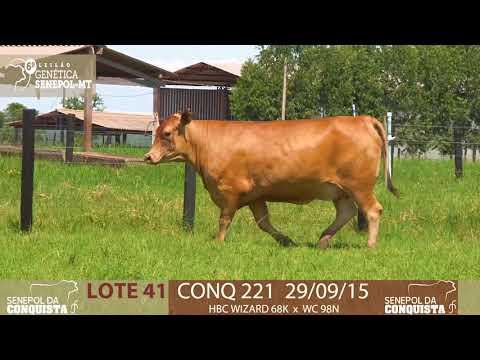 LOTE 41 CONQ 221