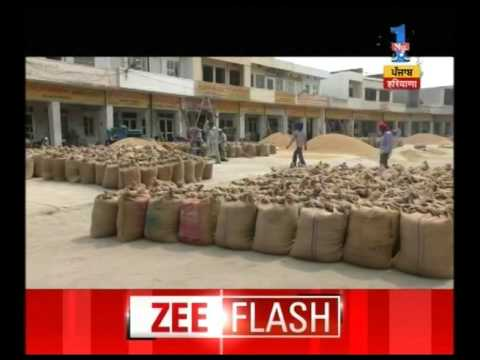 Farmers concern as no buyer of rice in Kaithal district Market