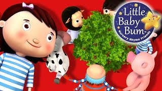Here We Go Round The Mulberry Bush | Nursery Rhymes | by LittleBabyBum
