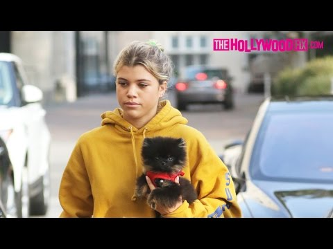 Sofia Richie & Moises Arias Go Christmas Shopping With Her Dog At Barneys In Beverly Hills 12.13.16