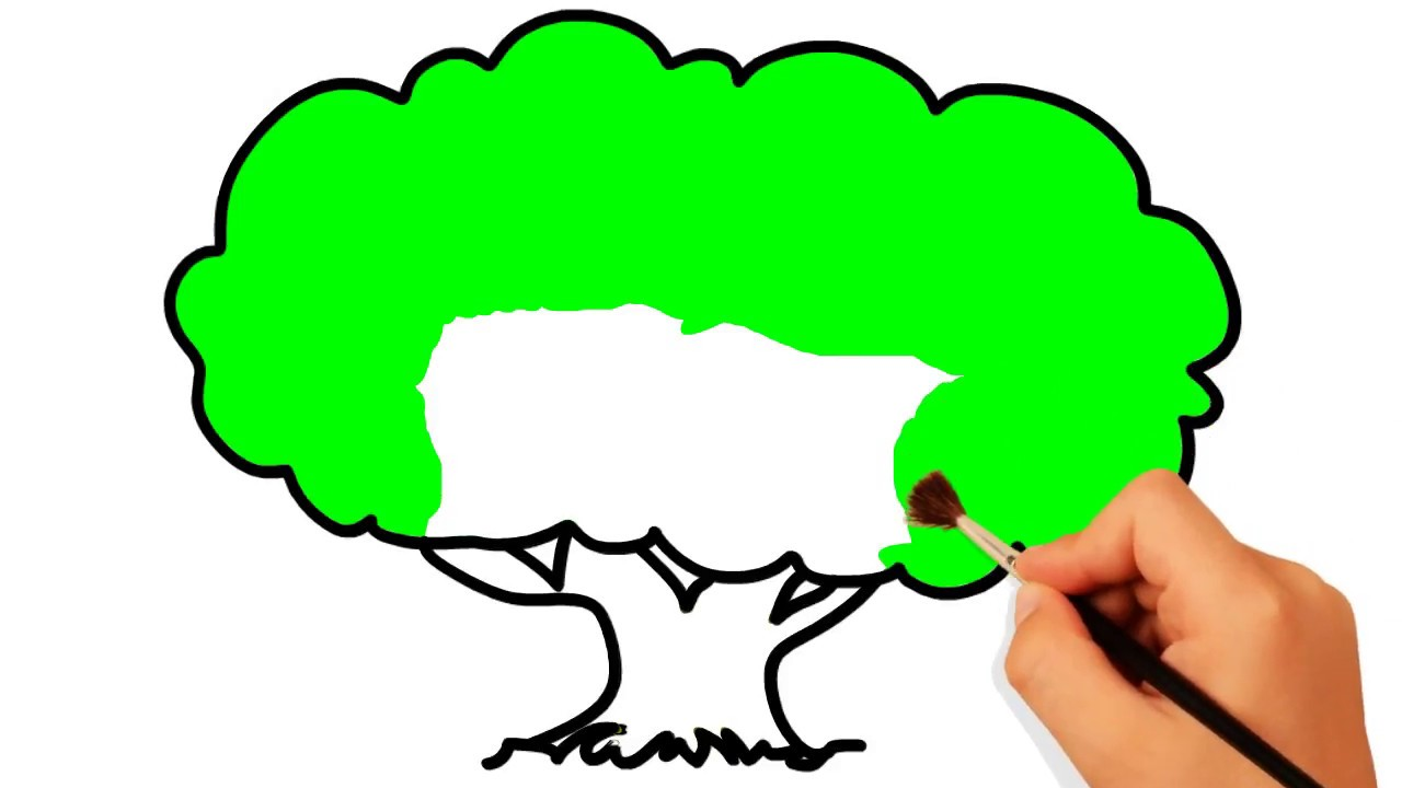 Tree Coloring Page | How to Draw A tree Easily | #colorsMA - YouTube