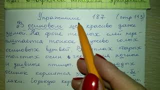 Упр 187 стр 113 гдз Русский язык 4 класс Антипова Верниковская Грабчикова 2018 1 часть