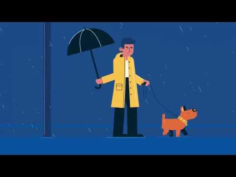 Ion Bank Commercial – Dog Walker