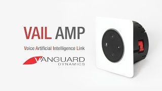 Unboxing VAIL Amp for Amazon Echo Dot (2nd Gen)