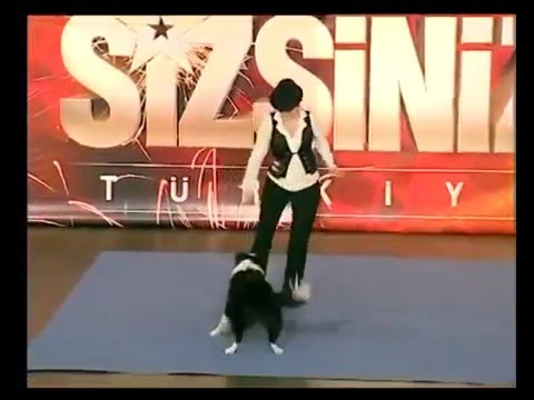 Dancing dog on Turkey's Got Talent (first appearance)