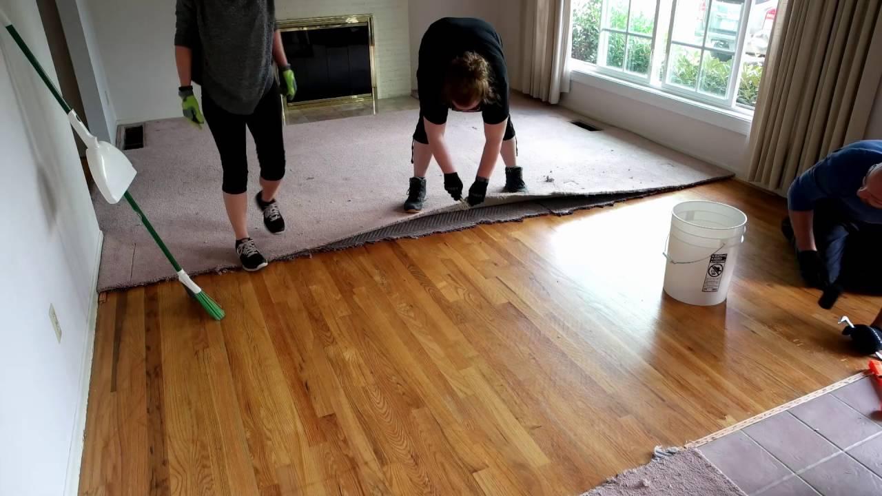 Ripping Up Carpet And Refinishing Hardwood Floors Www