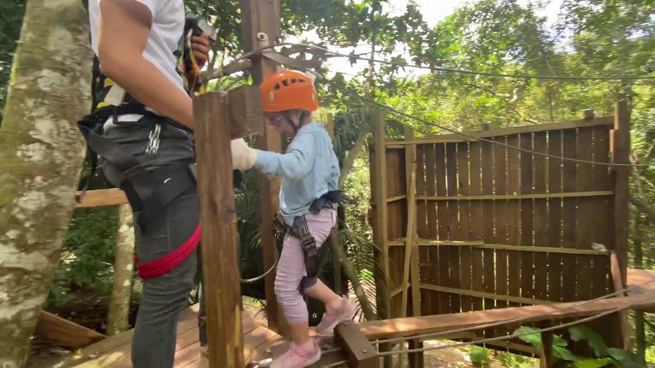 野猴子探險森林-16 最後一關 - YouTube