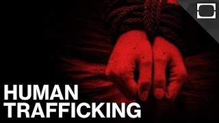 How Common Is Human Trafficking Today?