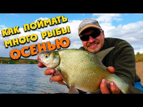 Рыбалка на фидер осенью / Как ловить леща в сентябре?