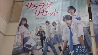サクラダリセット 前篇 劇場限定グッズ(2) シェアOK お気軽に 【映画鑑...