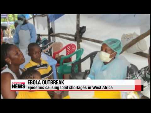 Ebola epidemic causing food shortages in West Africa