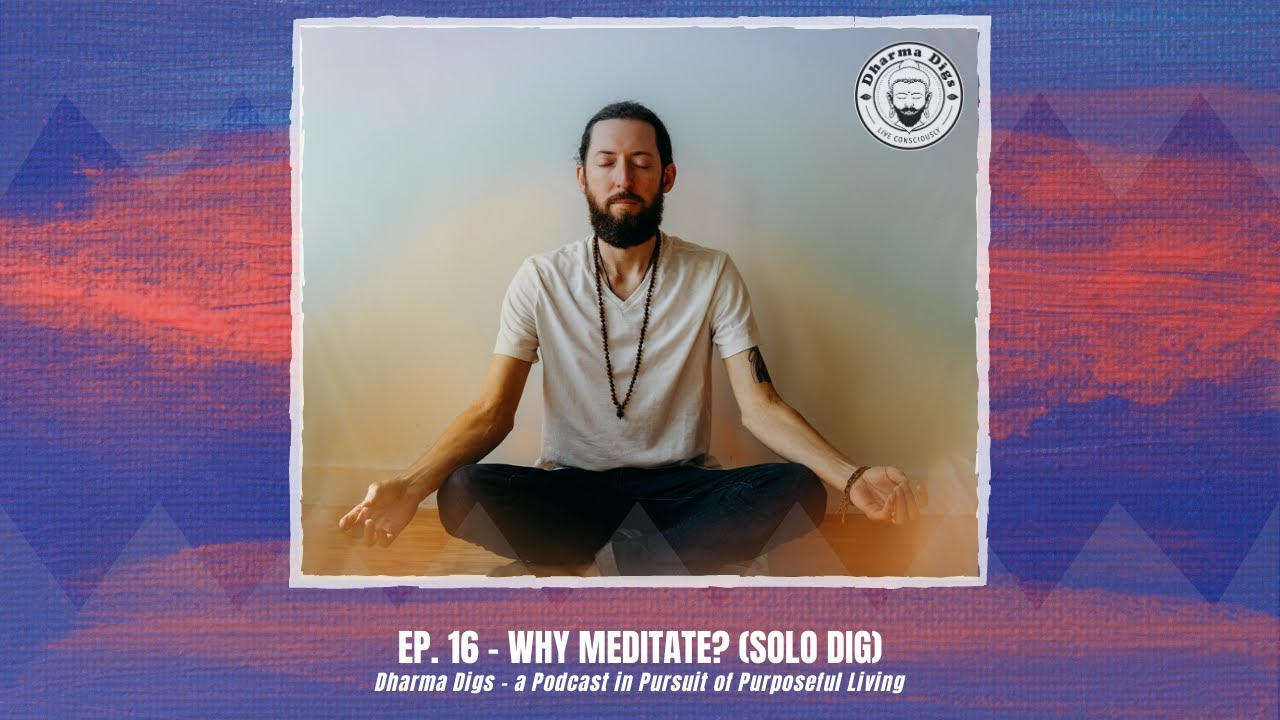 Ep. 16 - Why Meditate? (solo dharma dig) +  Announcing Group Meditations