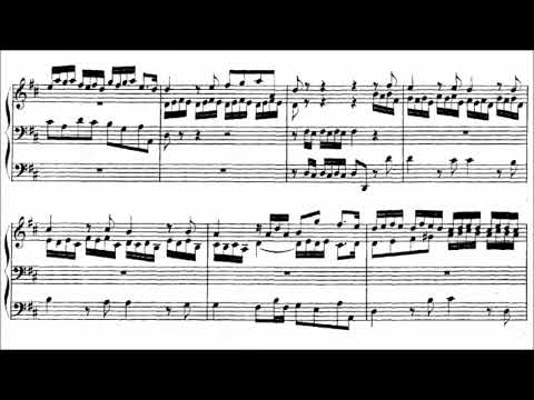 J.S. Bach - Prelude and Fugue in D major, BWV 532 {Peter Hurford}