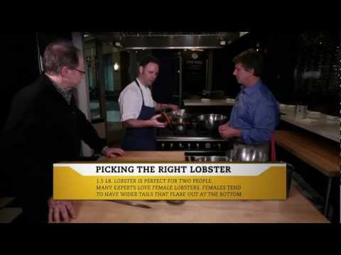 Epicure Episode 2: Society Fair - Lobster and Fennel Salad