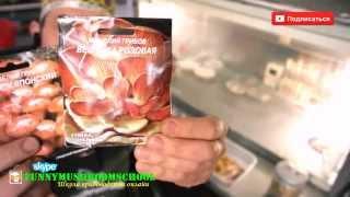 ЭПИЦЕНТР. Мицелий грибов на палочках от Семена Украины(, 2014-04-29T06:00:02.000Z)