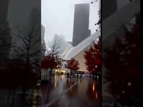 World Trade Center. Memorial
