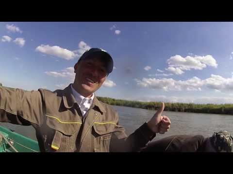 рыбалка в астрахани в сентябре на сазана