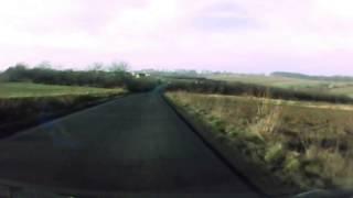sarny na drodze :)