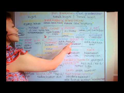 LEARN DUTCH/ NETHERLANDS & INDONESIAN LANGUAGE/ BAHASA INDONESIA [IN ENGLISH] #31 FAMILY TREE