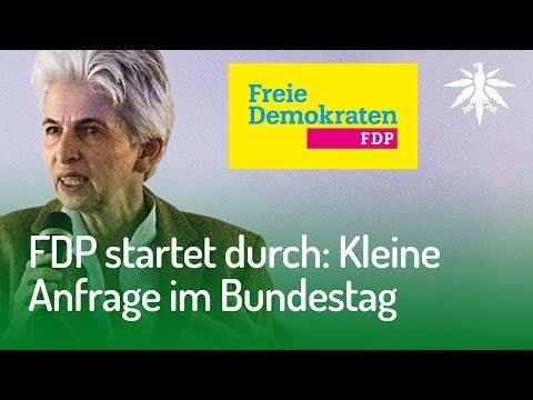 FDP startet durch: Kleine Anfrage im Bundestag | DHV News #149