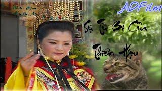 Nhân Gian Huyền Ảo Phần 3 Tập 3 - Phim Đài Loan (AD Film)