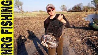Рыбалка на плотву весной | Ловля плотвы на поплавочную удочку