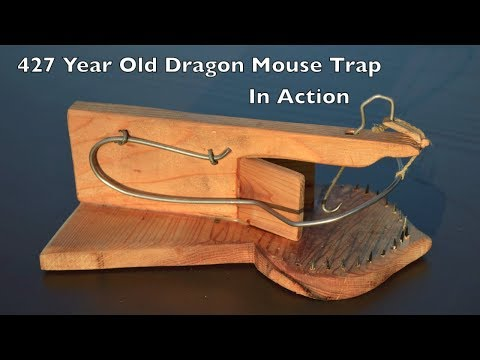"427 Year Old Style ""Dragon Mouse Trap With A Great Wire"" In Action."