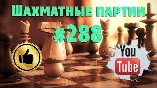 Шахматные партии #288 Blitz Chess ♔ Против Kanariebamsen — Испания ♚ D24 Opening QGA, 4 Nc3