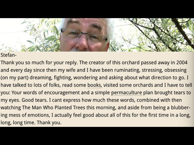 These 5 TREES improve your soil and work HARD - Nitrogen fixing trees (part 3)