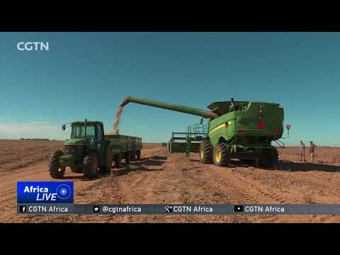 Land expropriation without compensation plan elicits mixed reaction in South Africa