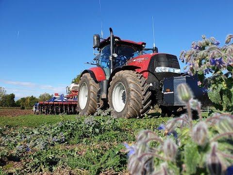 Jonny1388 Drilling Wildflowers in my Field - Plus BIG Announcement!