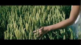 Cargo 2009 (Movie)