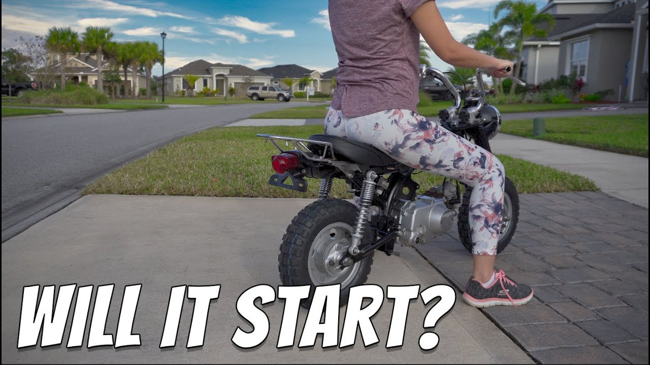 Download First Start Attempt of the Monkey z50J