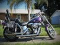Vince's 1986 Harley Davidson Softail Custom