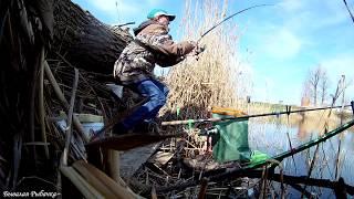 Рыбалка в запрет в режиме самоизоляции Поклёвки карася на фидер и поплавок