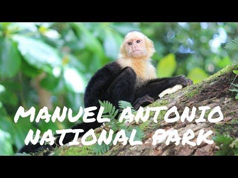 Manuel Antonio National Park Costa Rica - Beach, monkeys, park