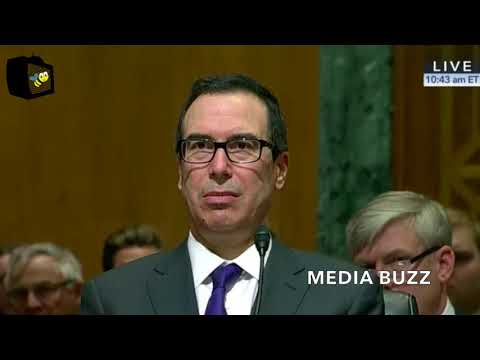 Steven Mnuchin Testifies on Trump's 2019 Treasury Department Budget Request 2/14/18